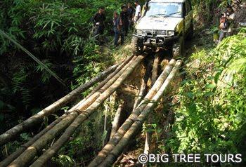Kuala Lumpur 4x4 Off Road Adventure Teambuilding, 4WD Driving Course - Janda Baik