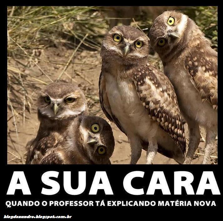 suacara.png (712×703)