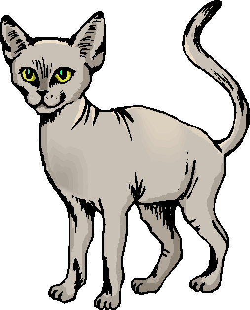 Sphynx Cat Standing Alone Free Clipart