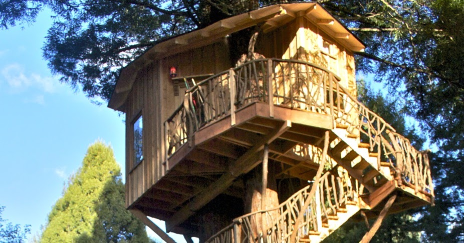 TV with Thinus Animal Planet renews Treehouse Masters and Yankee
