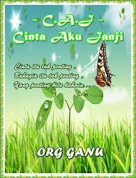 Novel : C.A.J - Cinta Aku Janji