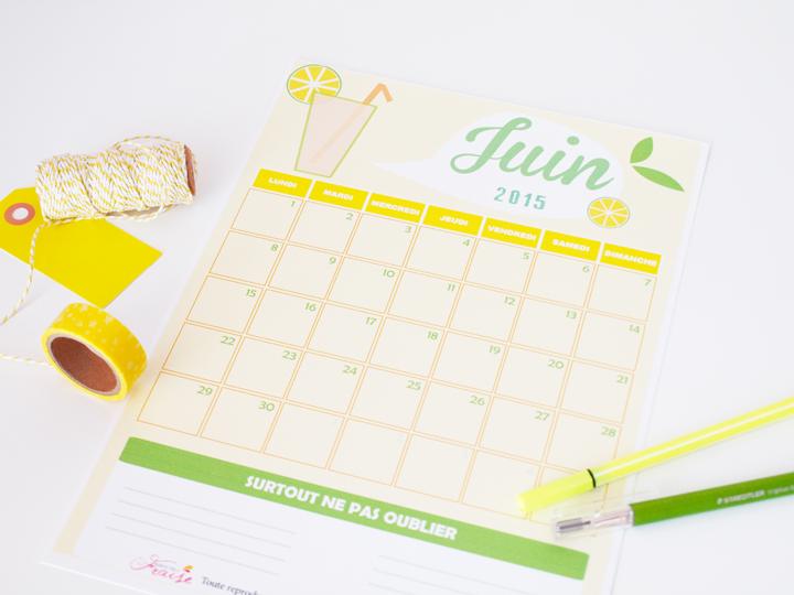 calendrier DIY du mois de Juin 2015