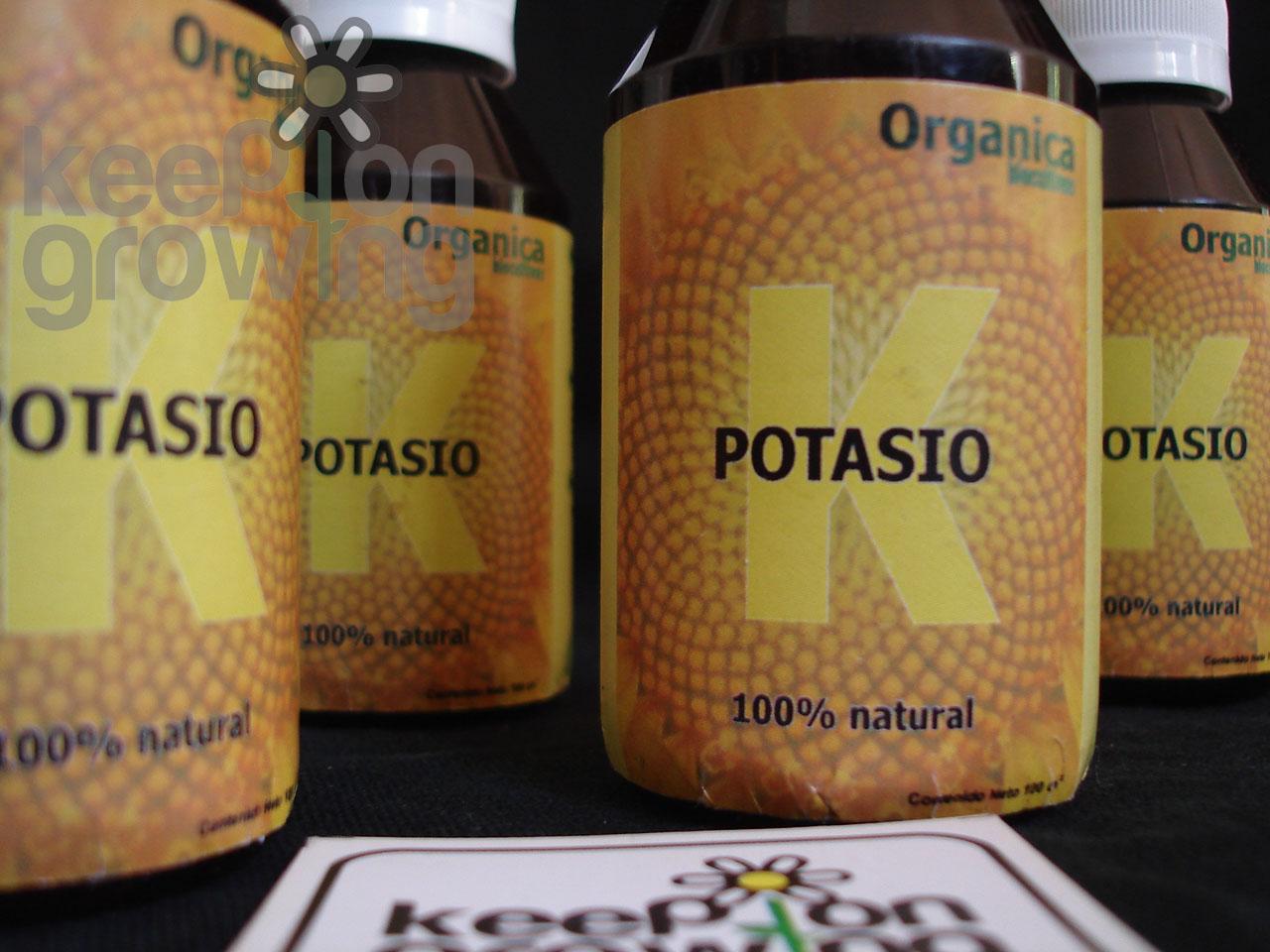 Keep on growing mimamos tus plantas potasio liquido for Potasio para plantas