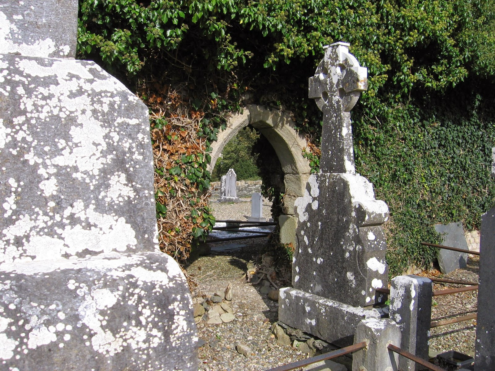 Old graveyard outside church ruins at Ballina in County Tipperary in Ireland