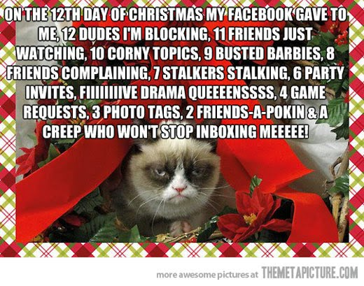 The Christmas Blog 2017: This Christmas Grumpy Cat And ...