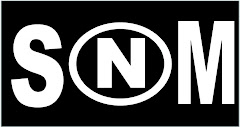 N-SOM