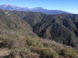 View northeast toward Little Dalton Canyon, Glendora Mountain Road, and the Baldy high country from Glendora Mountain, Angeles National Forest