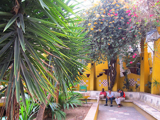 Santiago de Cuba people sitting outside with colorful trees