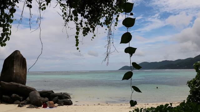 Insel Mahe Seychelles