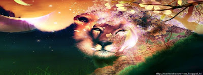 couverture facebook hd lion