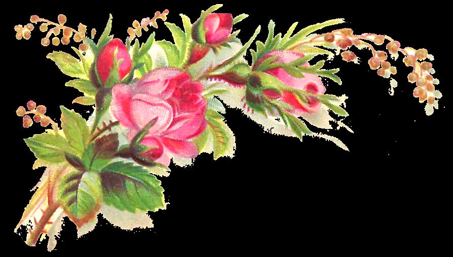 Antique Images Free Flower Clip Art Pink Rose Bouquet Graphic