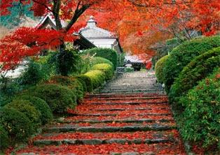 foto pemandangan indah di jepang