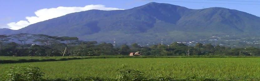 Nara Momang