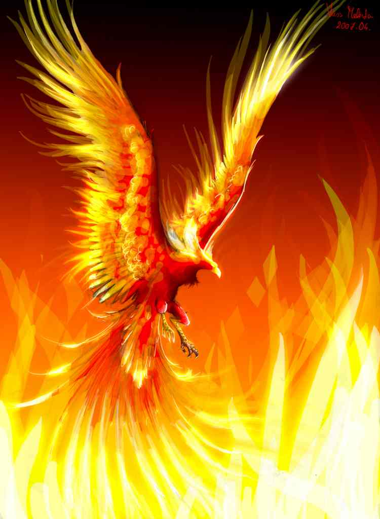Red golden phoenix is born Burning past falls Rising from ashes