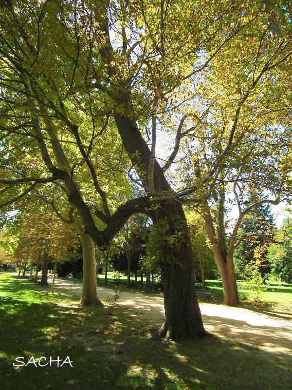 Chemins et jardins le jas de bouffan maison c zanne for Le jardin des 5 sens aix en provence