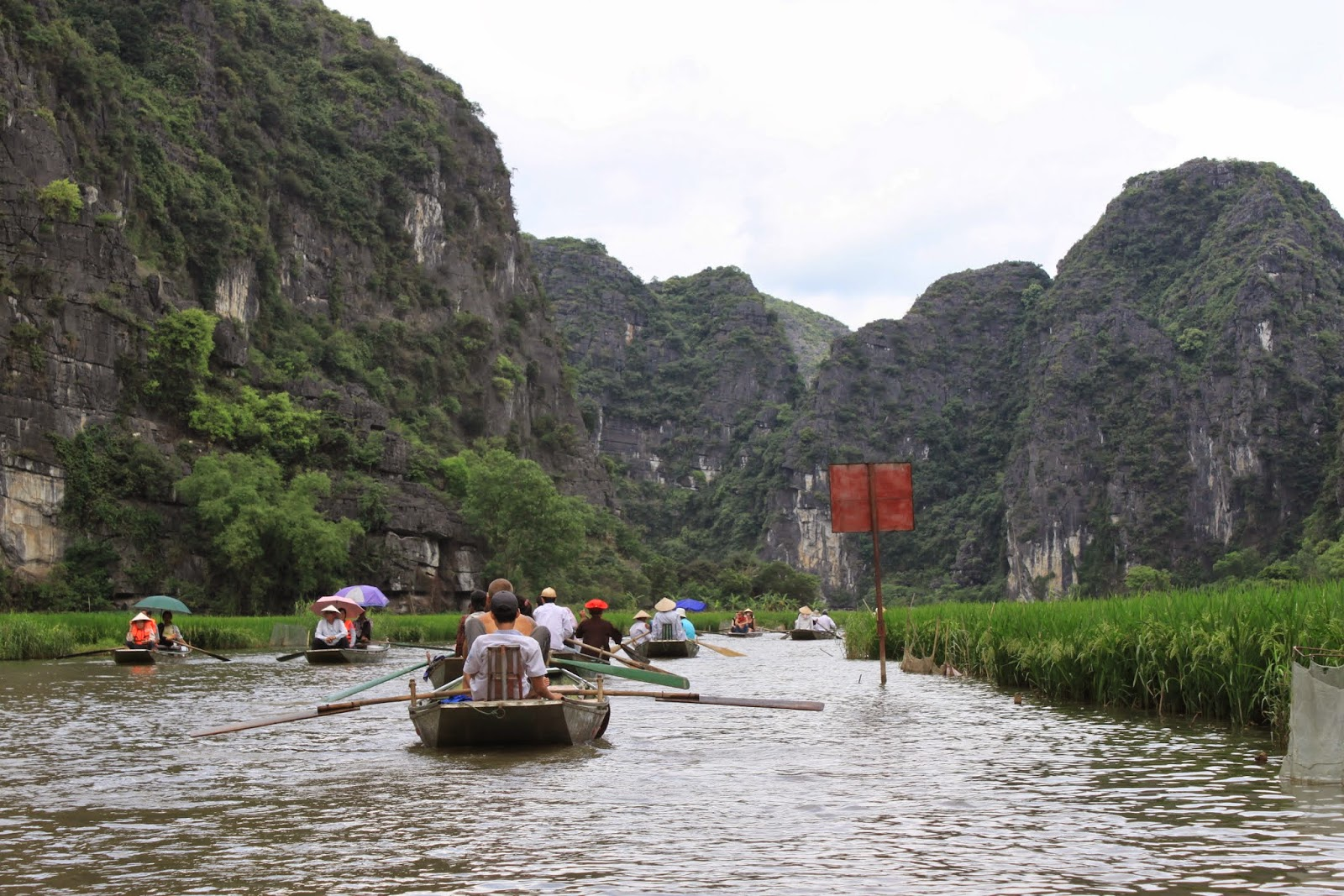 My favourite photo with magnificent natural landscape scenery over the rock formation on mountains and  rice paddies along Ngo Dong river at Tam Coc, Ninh Bình city in Vietnam