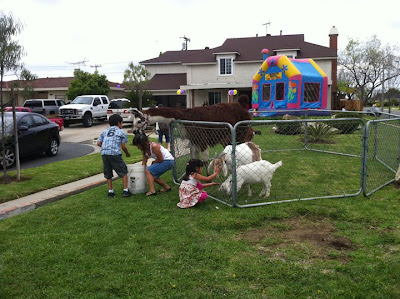 Traveling Petting Zoo & Pony Ride - Kids Birthday Party Los Angeles