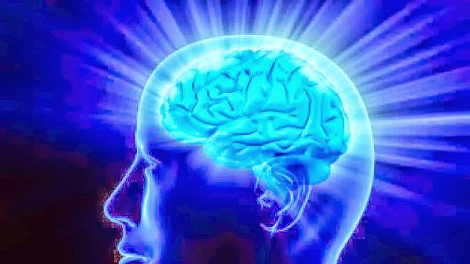 Brain, Memory Loss