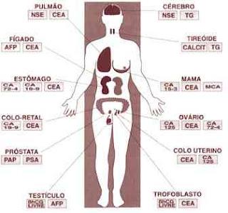 marcador tumoral,cea19,9,afp,ca 125,cea