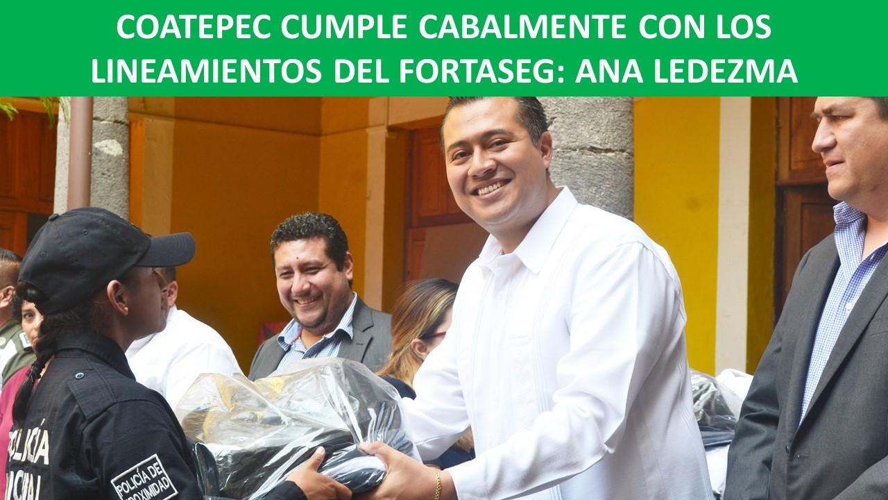 LINEAMIENTOS DEL FORTASEG: ANA LEDEZMA