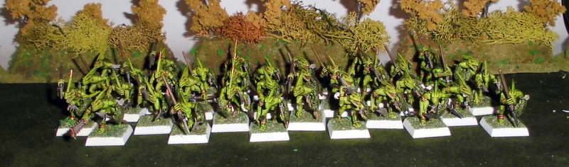 Armée Warhammer Battle 1-CIMG1286