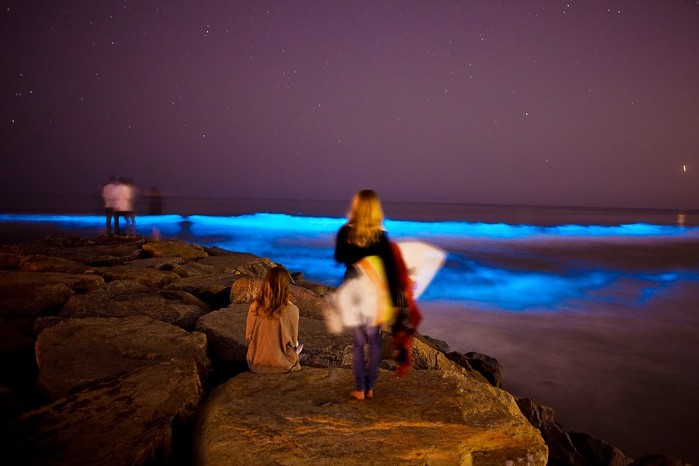 No bad tides surfing after dark with and without for Tides for fishing san diego
