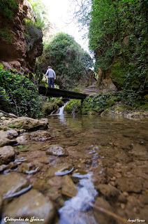 Aguas transparentes en Las Chorreras