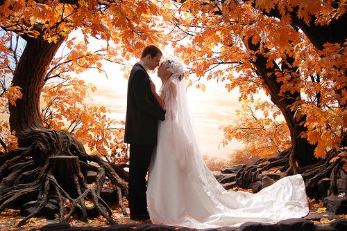 Sonbahar Düğünü Oyunu