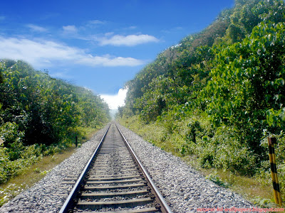 Beautiful rail track