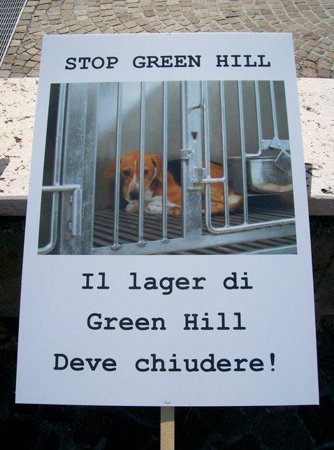 Montichiari contro green hill comitato dicembre 2011 for Interno 4 montichiari