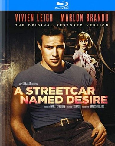 the brilliance of the author in the play a streetcar named desire by tennessee williams Revisiting tennessee williams  the brilliance of williams' sense of theatre and  and a streetcar named desire again, tennessee williams grabs me and.