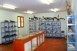 museo leoncio prado