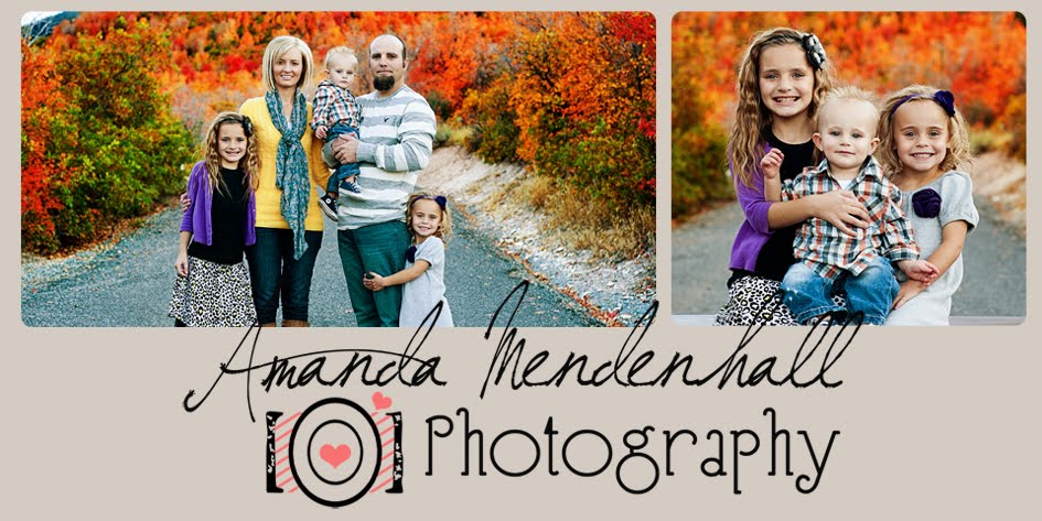 Mendenhall Photography