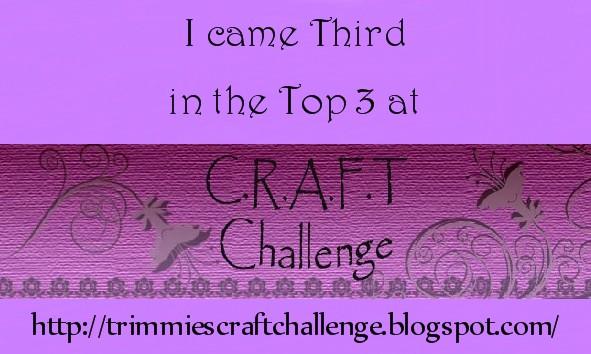Top 3rd at CRAFT