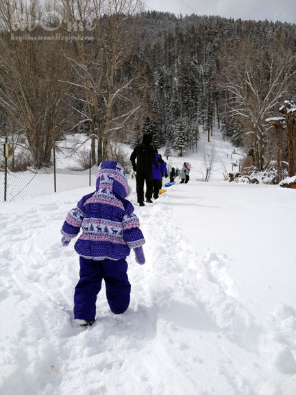 Bit o me winter family vacation new mexico for Best family winter vacation spots