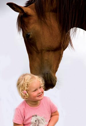 Andelshest; Den enkleste måten å eie egen hest!
