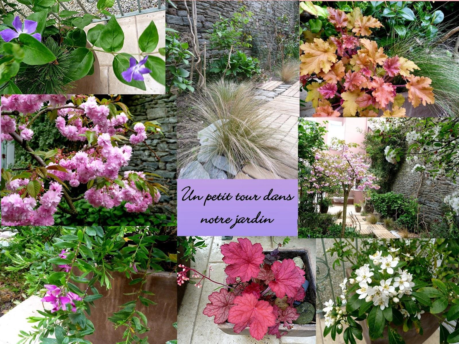 Nanouanne un petit tour de jardin - Petit jardin culinary arts tours ...