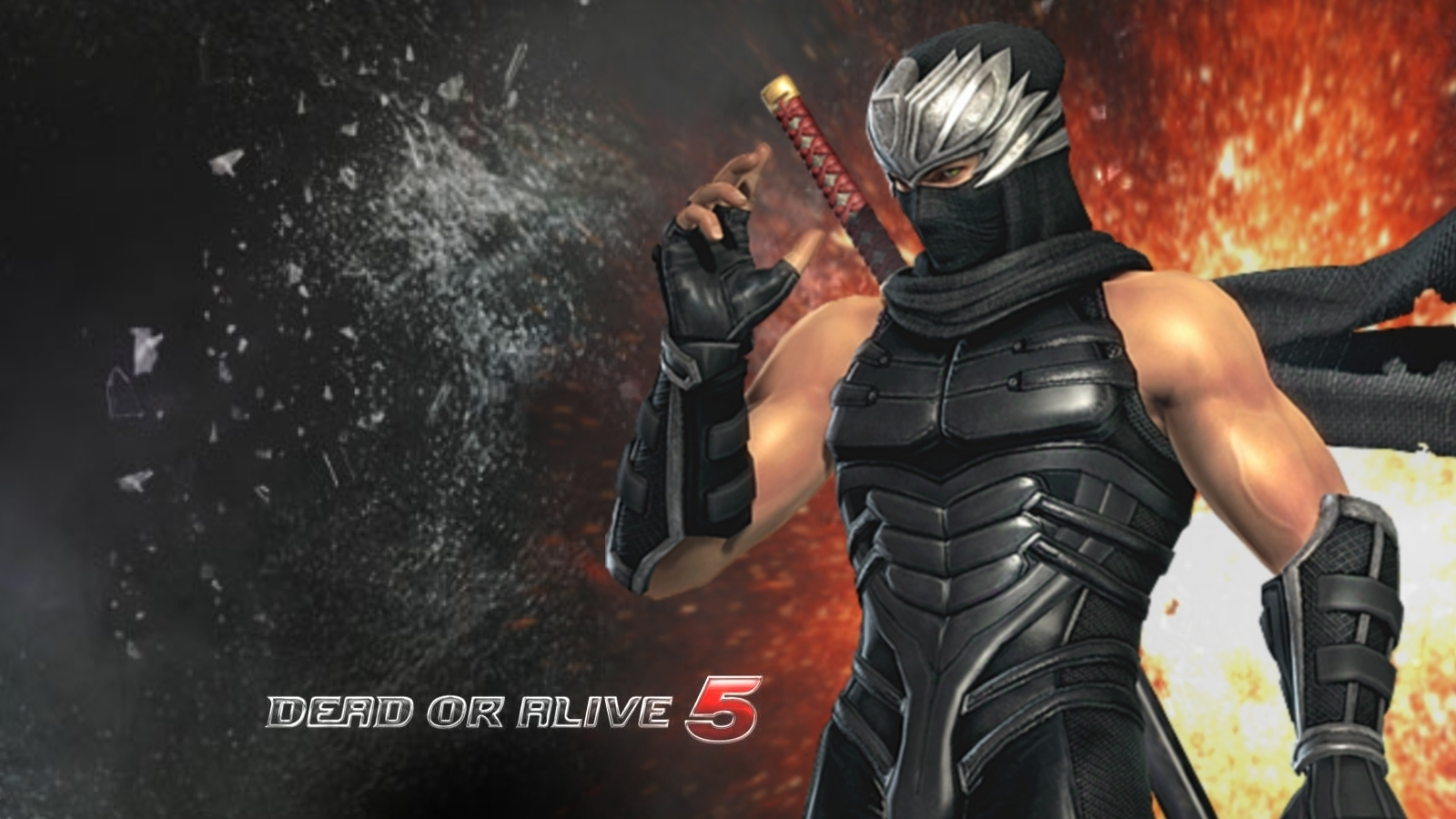 Ryu_Hayabusa_DOA_5_Game_Wallpaper.jpg