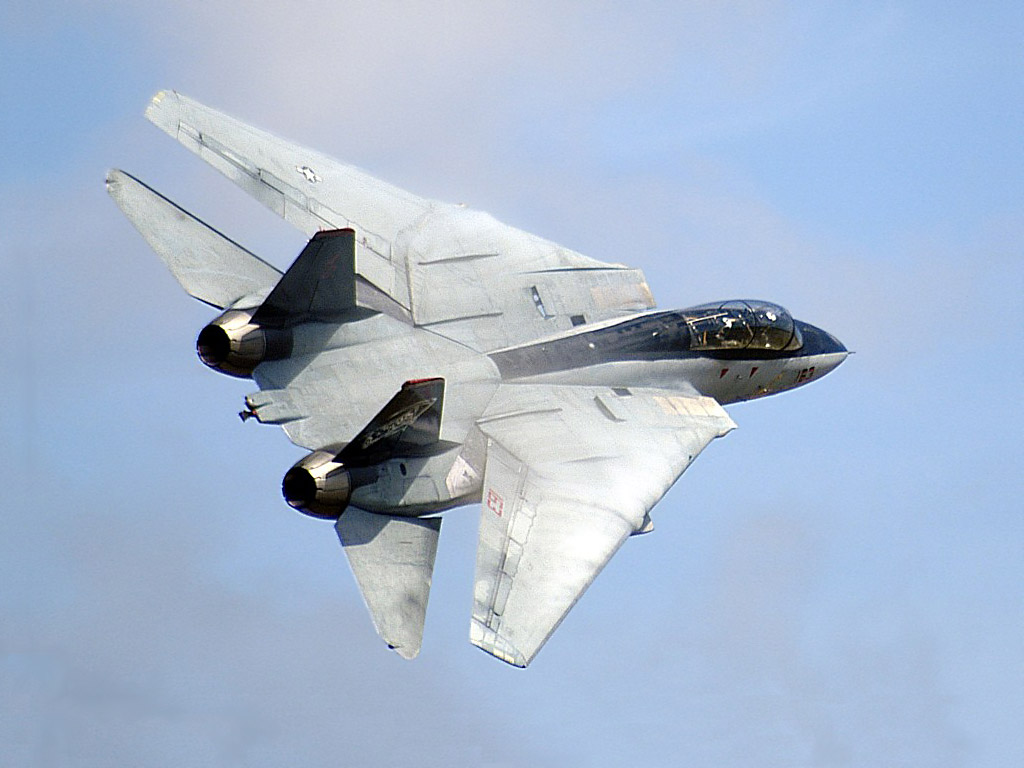 Amazon.com: REMOTE CONTROL RC 2.4G Extremely Detailed F-14 Twin