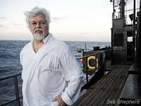 Costa Rica aumenta o ataque político ao capitão Watson e à Sea Shepherd; Interpol emite alerta 'vermelho'