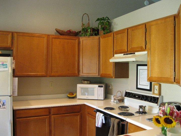 Budget Kitchen Remodel!
