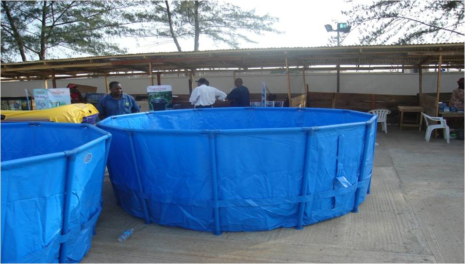 How to start fish farming business in nigeria practical for Fish pond tanks for sale