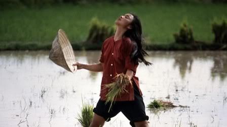 """Cette image est extraite du film """"Heaven and Earth"""", en français """"entre ciel et terre"""", sorti en 1993 et troisième film de la trilogie d'Oliver Stone consacrée au Viêt Nam (après """"Platoon"""" et """"Né un 4 juillet). Le synopsis du film est le suivant : Dans un petit village comme il en existe des milliers au Viêt Nam, une jeune fille découvre la colère d'un peuple, son peuple. Dans une famille bouddhiste qui envoie deux de ses fils à la guerre, recrutés presque de force par les troupes du nord, les Việt Cộng sont loin d'être le modèle de service envers la patrie qu'ils veulent faire croire. Les Américains et les forces gouvernementales du Sud Viêt Nam ne le sont pas davantage. Et l'on a une parfaite critique des deux camps de cette guerre. Subissant les pires humiliations physiques et morales, elle fuit vers Saïgon où le destin semble s'acharner contre elle jusqu'au jour où elle fait la connaissance de Steve Butler, un soldat américain qui tombe fou amoureux d'elle. Il veut l'épouser et la ramener aux États-Unis. Cette image extraite du film représente l'héroïne dans son pays debout dans une rizière. Elle acccompagne le poème """"Heaven and Earth"""" du Marginal Magnifique qui prend comme prétexte le récent visionnage de ce film qui lui a fait forte impression pour déclarer que le cinéma n'est plus ce qu'il était, avant entreprise artistique aujourd'hui usine à fric pour résumer. Le grand poète dénonce le cinéma d'aujourd'hui qui est devenu un business consensuel avec de gros effets spéciaux, mais ne présentant plus aucune qualité esthétique ni aucun sens profond capable de changer la vie du spectateur comme c'était le cas encore à l'époque où le film d'Oliver Stone a été tourné."""