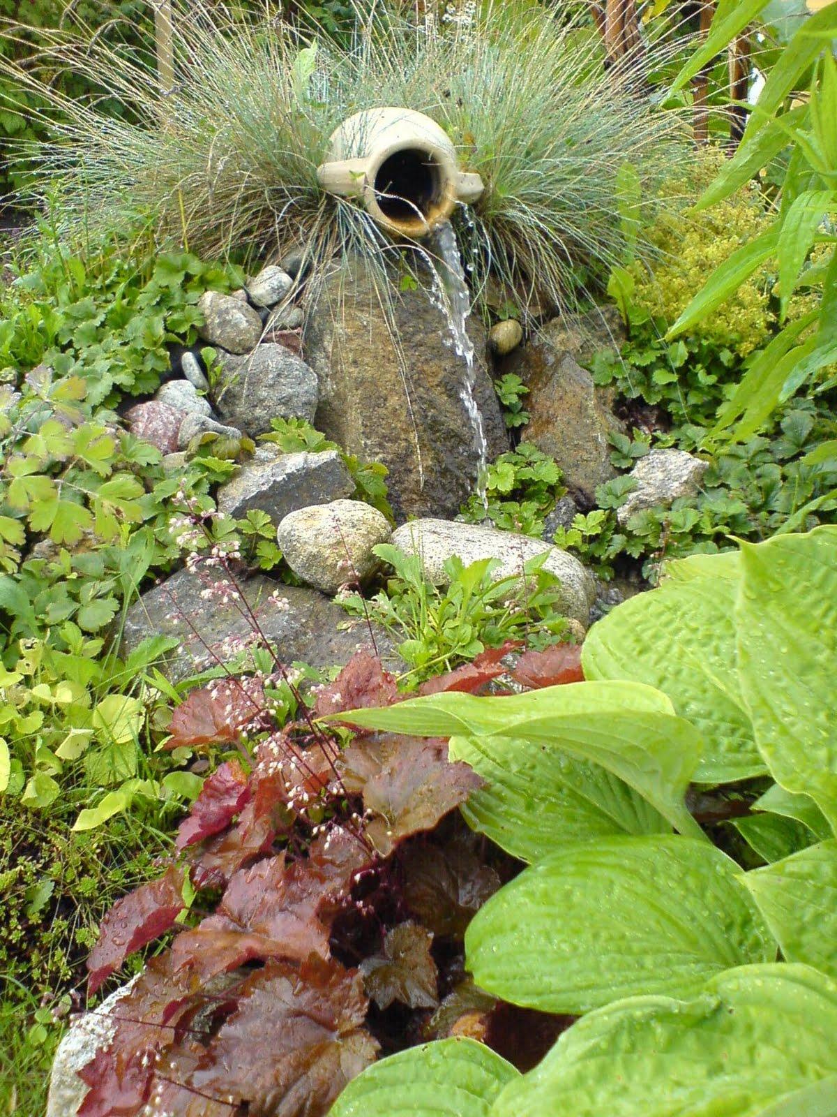 Tittis trädgård: vatten i trädgården