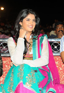 Deeksha Seth at Nippu audio Function in Stunning Churidar Full Sleeves Kurta