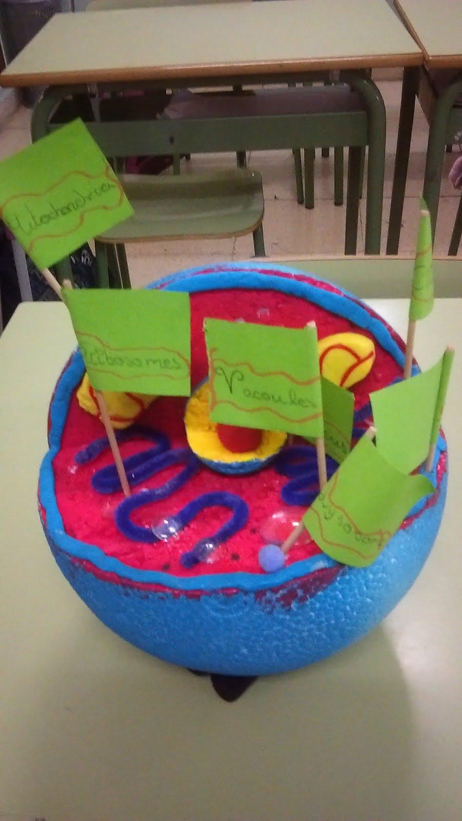 Salud Escolar en el Colegio Mercedes de Santander: Arte, ciencia...e ...