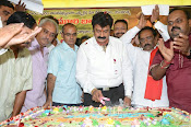 Balakrishna Birthday Celebrations-thumbnail-13