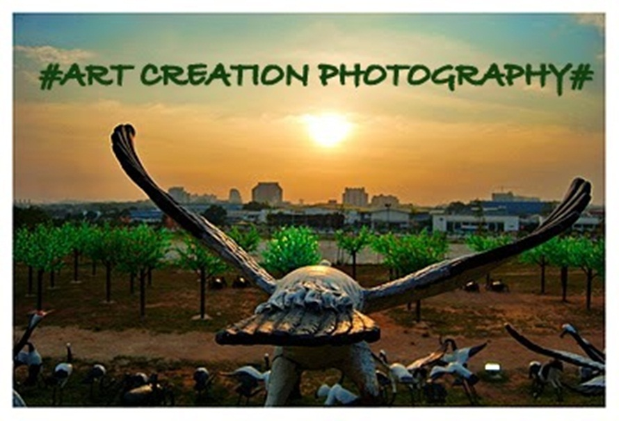 Art Creation Photography