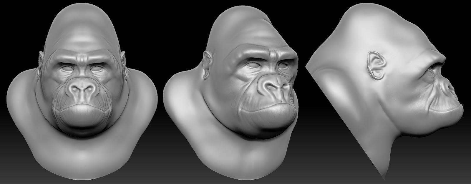 The Blog of Hayden McGowan: Gorilla Head Speed Sculpt