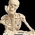 Berapa banyak tulang yang kita miliki?